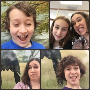 11 zoo selfie collage