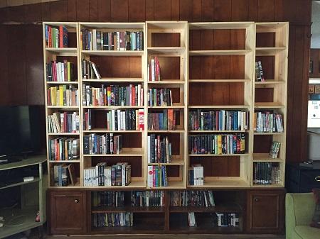 07 bookshelves 1